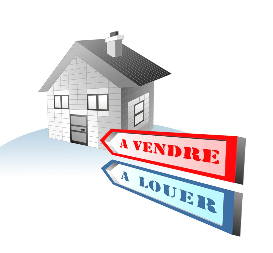 Agence immobilière : Un appartement ou une maison ?